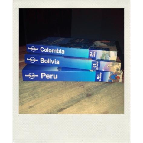 polaroid reis