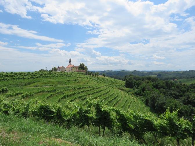 Slovenië: wijn is fijn